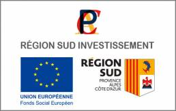 Région Sud Investissement - Therapixel