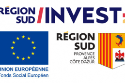 Region-Sud-Investissement-Therapixel